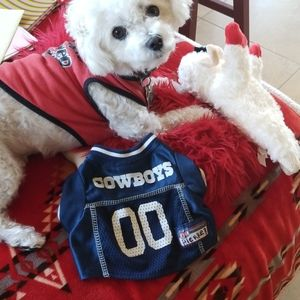 DALLAS Cowboys NFL Blue Jersey Dogs Puppy Cat  XS